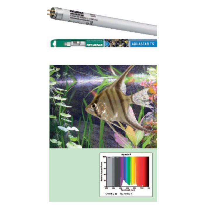 Лампа  SYLVANIA Т5 Aquastar 54Вт 114.9см, цоколь G5