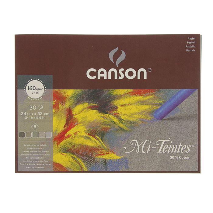 Альбом для пастели С4 240*320 мм Canson Mi-Teintes 5 160 г/м2, 30 листов, серые тона, склейка 400030143