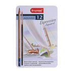 Набор художественных карандашей, цветные, акварельные Bruynzeel Expression Aquarel 12 шт. + кисть в металлической коробке