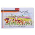 Карандаши художественные цветные Bruynzeel Expression Colour 36 цветов в металлической коробке 7705m36