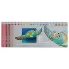 Набор художественных карандашей Bruynzeel-sakura Черепаха 45 цветов в металлической коробке