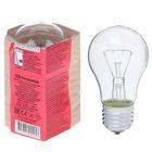 Лампа накаливания А50, 60 Вт, E27, 230 В, КЭЛЗ