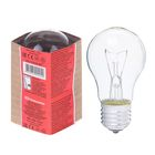 Лампа накаливания А50, 40 Вт, E27, 230 В, КЭЛЗ