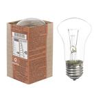 Лампа накаливания М50, 60 Вт, E27, 230 В, КЭЛЗ