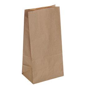 Пакет крафт бумажный под бутылку, 12 х 8 х 24 см Ош