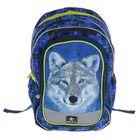 Рюкзак школьный с эргономичной спинкой Belmil 43 х 28 х 17 см,The Spacious Alaska