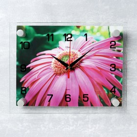 "Часы настенные, серия: Цветы, ""Розовая гербера"", 20х26 см микс"