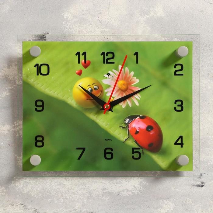 """Часы настенные, серия: Животный мир, """"Божья коровка"""", 20х26 см"""