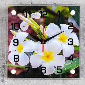 """Часы настенные, серия: Цветы, """"Белые цветки"""", 25х25 см микс"""