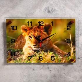Часы настенные прямоугольные 'Львенок', 25х35 см микс Ош
