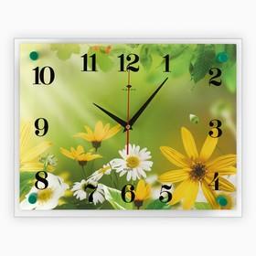 """Часы настенные, серия: Цветы, """"Ромашки"""", 30х40 см микс"""