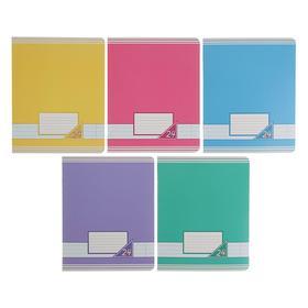 Тетрадь 24 листа в линейку «Цветные фоны», обложка мелованный картон, ВД-лак, блок офсет, МИКС