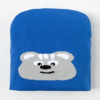 Шапка для мальчика, размер 48, цвет синий