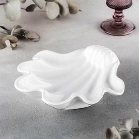 {{photo.Alt    photo.Description    'Блюдо-ракушка Wilmax, 22,5×21 см'}}