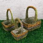 Набор корзин, 3  шт: с натуральным декором, 24х18х12/32 см, 21х15х10/28 см, 17х12х9/24 см