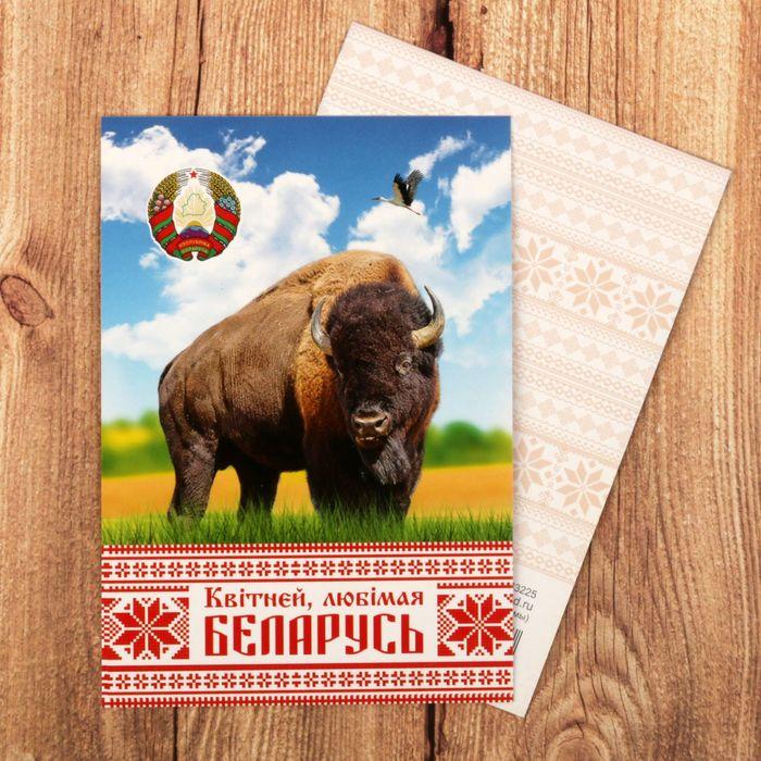 Открытки для, белоруссия открытка