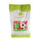 Семена газонной травы «Футбольный ковер», 10 кг