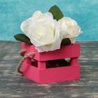 Ящик реечный,ручка- шнур, розовый, 11х12х9см