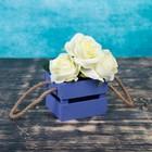 Ящик реечный, ручка- шнур, фиолетовый, 11х12х9см