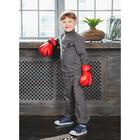 Костюм спортивный для мальчика (толстовка, брюки), рост 98-104 см, цвет серый