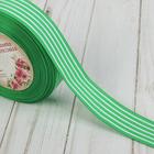 Лента репсовая «Полоски», 25 мм, 22 ± 1 м, цвет зелёный