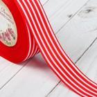 Лента репсовая «Полоски», 25 мм, 22 ± 1 м, цвет красный