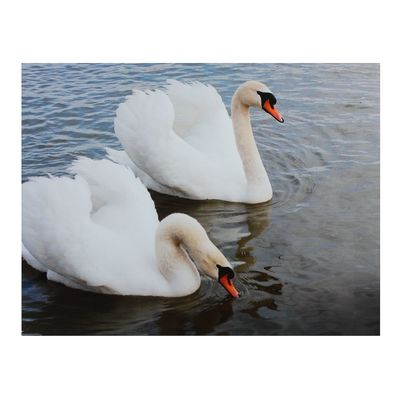 "Картина на подрамнике ""Два лебедя"""