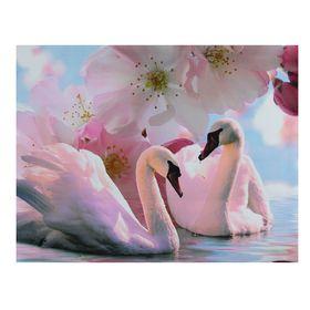 "Картина на холсте ""Лебеди под цветами"" 30х40 см в Донецке"