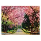 """The painting on the stretcher Alley """"Sakura"""""""