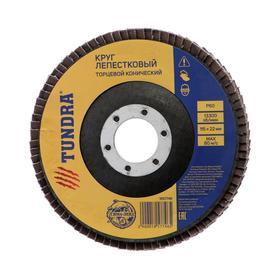 Круг лепестковый торцевой конический TUNDRA, 115 х 22 мм, Р60 Ош