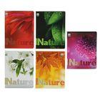 """Тетрадь 96 листов клетка """"Цветы. Листья"""", обложка картон хромэрзац"""