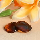 Пуговица декоративная, 2 прокола, 20 × 23 мм, цвет оранжевый/коричневый