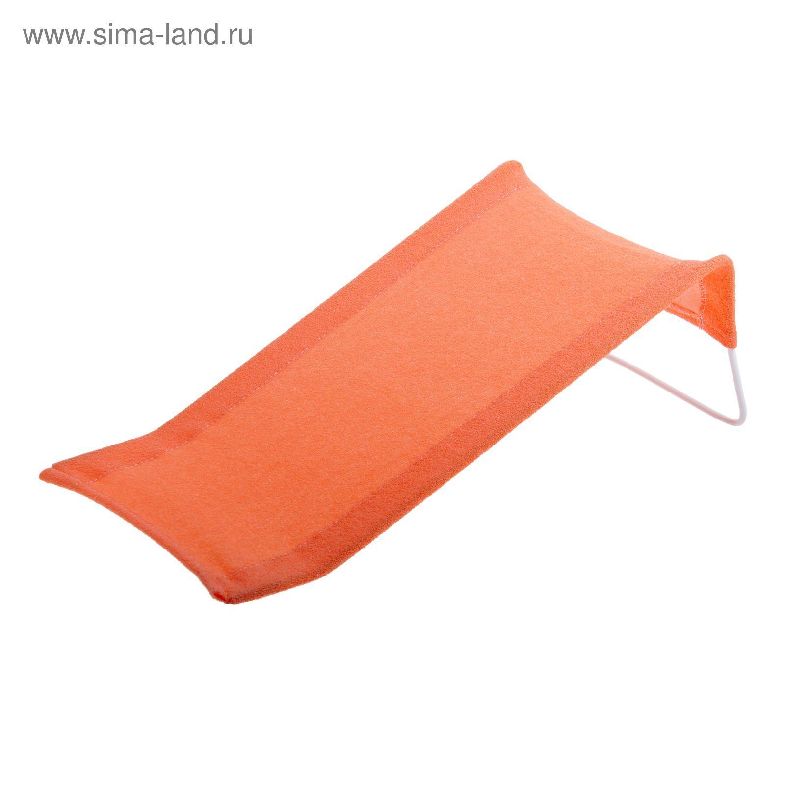 Фото цветов морковного цвета