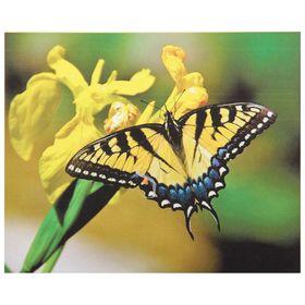 """Папертоль """"Бабочка жёлтая"""" - фото 7456008"""