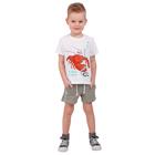 """Шорты для мальчика """"Рифы"""", рост 86 см (48), цвет бежевый, принт море"""