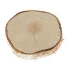 Спил березы, шлифованный с одной стороны, диаметр 20-25 см, толщина 2-3 см