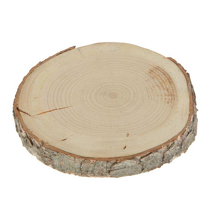 Спил кедра, шлифованный с одной стороны, диаметр 15-20  см, толщина 2-3 см