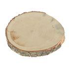 Спил кедра, шлифованный с одной стороны, диаметр 20-25 см, толщина 2-3 см