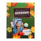 Дневник универсальный 1 — 11 класс «Школа», твёрдая обложка, глянцевая ламинация, 48 листов