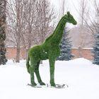 """Топиар-фигура """"Жираф"""""""