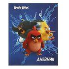Дневник для 1-4 классов, интегральная обложка Angry Birds, глянцевая ламинация, 48 листов