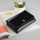 Кошелёк женский на кнопке, 4 отдела, отдел для кредиток и монет, цвет чёрный