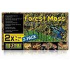 Растение пластиковое Terra Forest Plume Moss