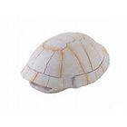 Убежище-декор панцирь черепахи для террариума