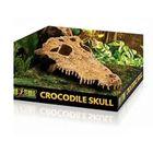 Декор череп крокодила  для террариума