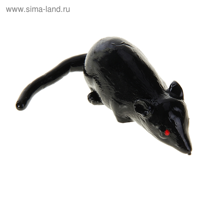 """Прикол """"Мышь"""", цвет черный"""