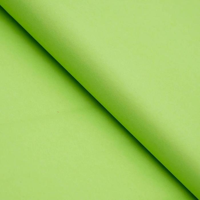 Бумага цветная Тишью (шёлковая) 510*760 мм Sadipal 1 л 17 г/м2 зелёный 11132