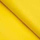 Бумага цветная, Тишью (шёлковая), 510 х 760 мм, Sadipal, 1 лист, 17 г/м2, жёлтый