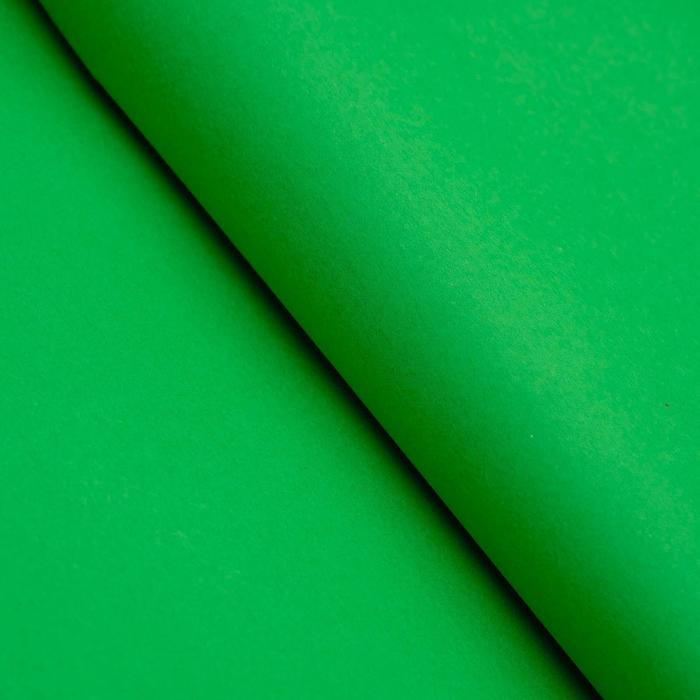 Бумага цветная Тишью (шёлковая) 510*760 мм Sadipal 1 л 17 г/м2 зелёный 11137