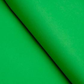 Бумага цветная, Тишью (шёлковая), 510 х 760 мм, Sadipal, 1 лист, 17 г/м2, зелёный